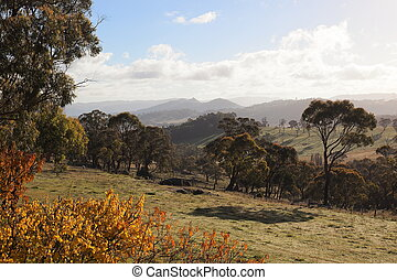 otoño, tablelands, colores, campo, oberon., australia., nsw.