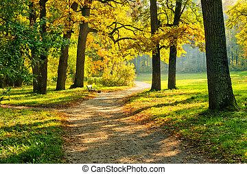 otoño, tibio