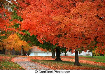 otoño, tiempo