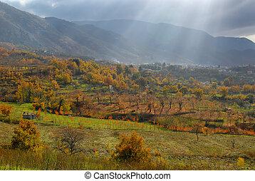 otoño, valle