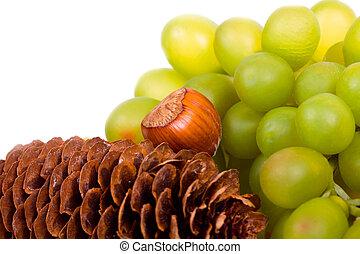 otoño, vida, todavía, uvas