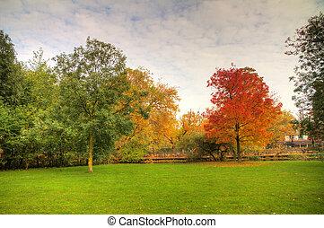 otoño, vondelpark