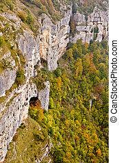 otoños, colores, cubierta, el, montaña