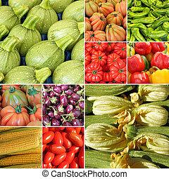 otro, composición, zapallitos, vegetales