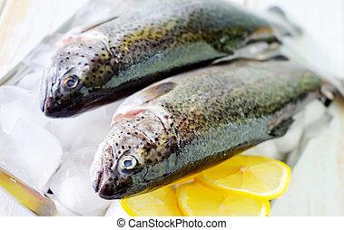 otrzyjcie skórę rybę