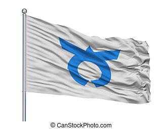 Otsuki City Flag On Flagpole, Japan, Yamanashi Prefecture, ...