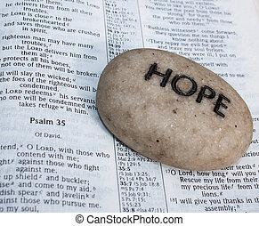 otwarta biblia, z, modlitwa, rock.