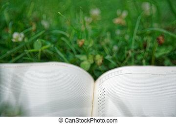 otwarty, zielony, notatnik, park, trawa