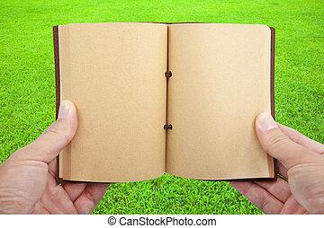 otworzony, książka, w, ręka dalejże, przedimek określony przed rzeczownikami, trawa pole