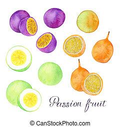 ou, coloré, fruits, différent, fruit, passion, granadilla, set., -, maracuyas., vrai, aquarelle, drawing., maracuya, main, dessiné