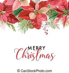 ou, inverno, texto, poinsettia, seu, vetorial, lugar, fundo, flores, cartão natal