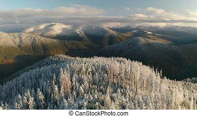 ou, montagne neigeuse, automne, winter.