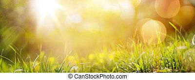 ou, printemps, frais, fond, herbe, été, art, résumé