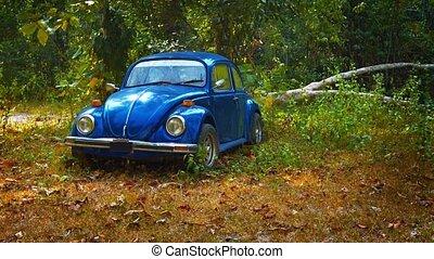 oud, kever, auto, verlaten, in, hout
