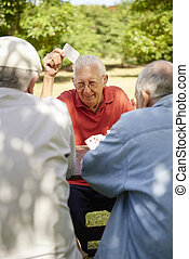 oud, ouwetjes, park, actief, kaarten, groep, vrienden, spelend