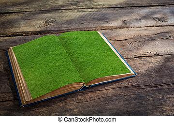 oud, pagina's, hout, achtergrond, gras, opengeslagen boek