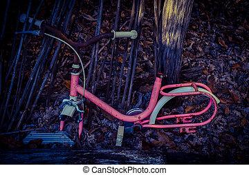 oud, roze, fiets