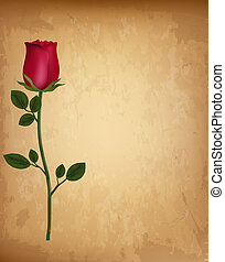 oud, valentine, roos, achtergrond., enkel, papier, vector., dag, rood, vrolijke