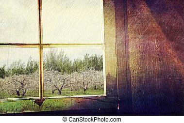 oud, venster, uit kijkend, om te, appel boomgaard