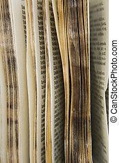 oud, woordenboek, reeks