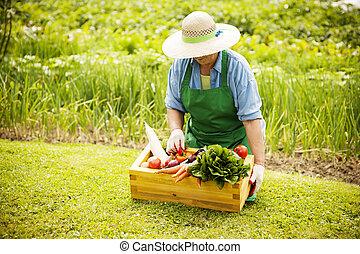 oude vrouw, met, groentes