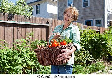 oude vrouw, met, groentes, van, tuin