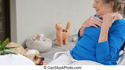 oude vrouw, spelend, met, haar, honden, 4k