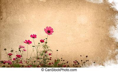 ouderwets, bloem, artistiek