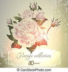 ouderwetse , abstract, ornament, elegant, vector, achtergrond, vegetative, floral