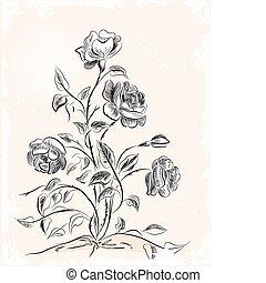 ouderwetse , begroetende kaart, met, rozen