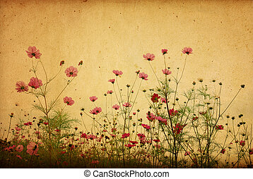 ouderwetse , bloem, papier, achtergrond