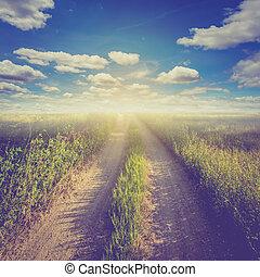ouderwetse , foto, van, akker, en blauw, hemel