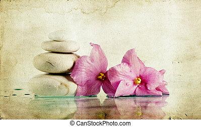 ouderwetse , foto, van, spa, stenen, en, roze bloem