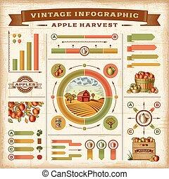 ouderwetse , infographic, oogsten, appel