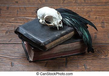 ouderwetse , leven, nog, hekserij