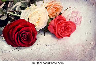 ouderwetse , roos