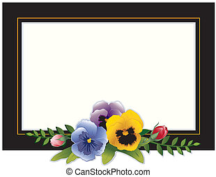 ouderwetse , viooltjes, frame, rozen