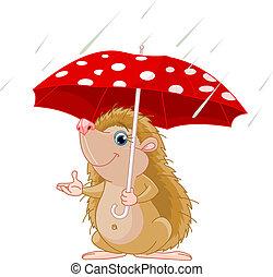 ouriço, guarda-chuva, apresentando, sob