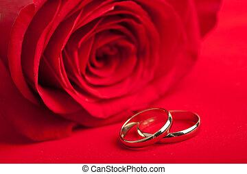 ouro, anéis casamento, e, rosa vermelha