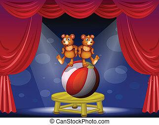 ours, cirque, deux, exposition
