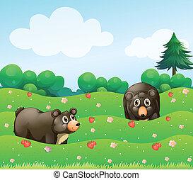 ours, deux, jardin
