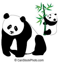 ours, mignon, bambou, ensemble, panda