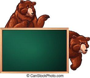 ours, planche, gabarit, deux