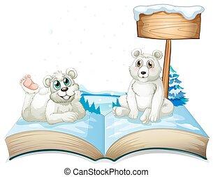 ours, polaire, livre, deux, neige