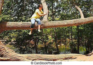 Out On A Limb - A Woman going out on a limb