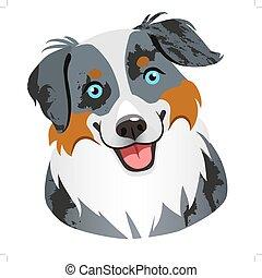 out., perro, lindo, merle, lengua, aislado, cara, amantes, australiano, sonriente, diseño, amistoso, animal, blanco, tricolor, arrear, mascotas, retrato, elemento, azul, themed, caricatura, pastor, illustration.