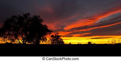 outback, amanhecer