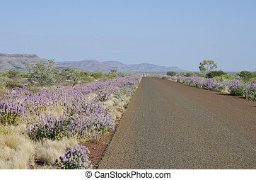 Outback Australia, Travel Holiday - Highway in remote...