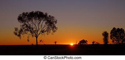 outback, ausztrália, napkelte