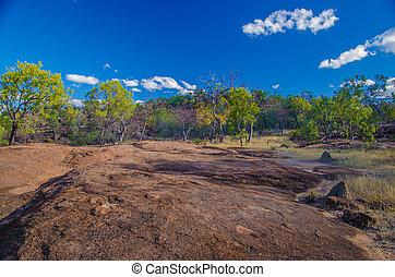 Outback - Eukalyptuswald und Felsformation im Undara...